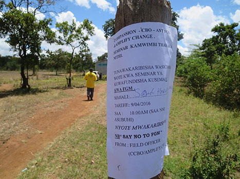Posters about Anti Fgm campaign